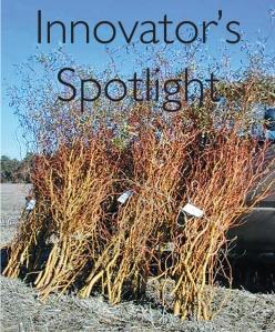 Innovator's Spotlight 5-14-14