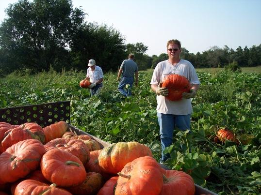 Brett Pumpkin 042