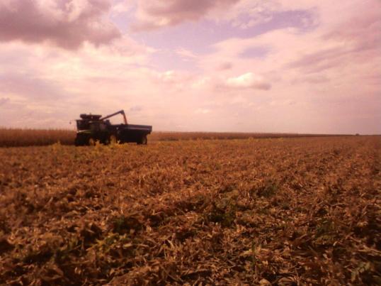 Harvest in Nebraska Oct. 11 2010