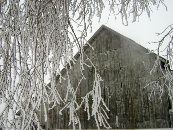 Roger Richters - Winter Solstice