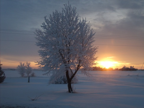 Sadi Halloran - Nebraska Winter Sunrise