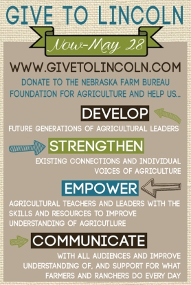 Give to Lincoln Info Gfx
