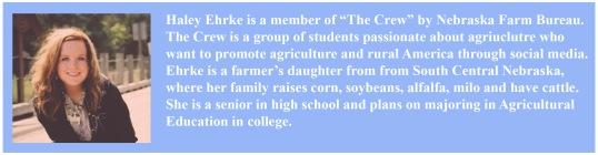 Haley Ehrke bio